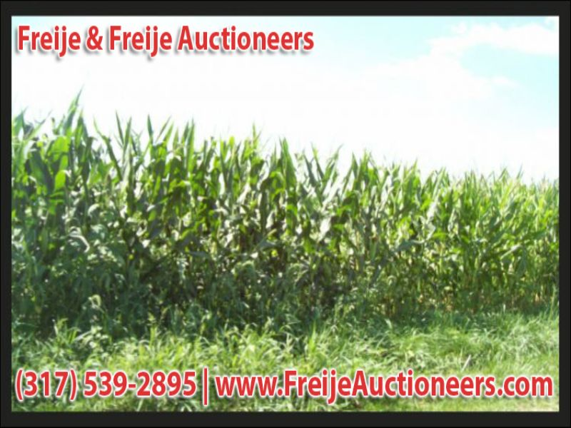 120± Acres For Sale At Auction : Clayton : Hendricks County : Indiana