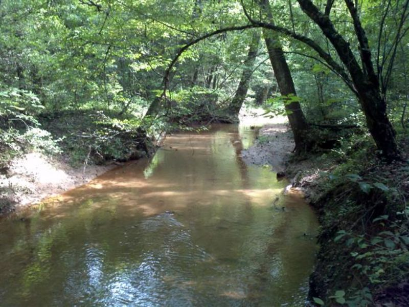82 Acres With View And 2 Creeks : Travelers Rest : Greenville County : South Carolina
