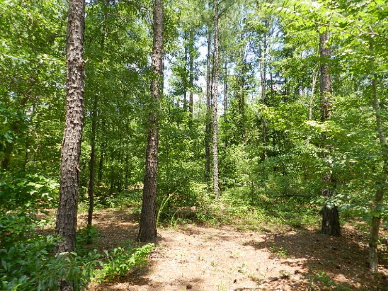 Reduced Country Home & Acreage : Jeffersonville : Twiggs County : Georgia
