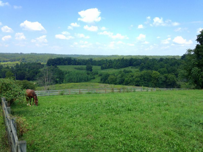 90 Acre Farm With Impressive Views : Lynnville : Giles County : Tennessee
