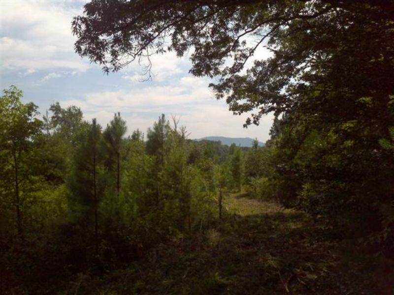 34.5 Ac Riverfront, Wooded View : Travelers Rest : Greenville County : South Carolina