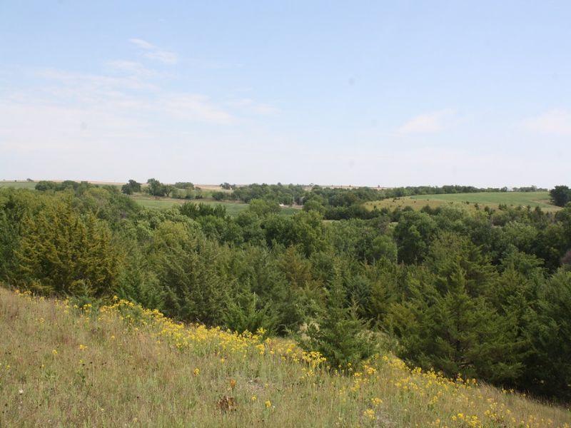 Whitetail Farm With Income : Esbon : Jewell County : Kansas
