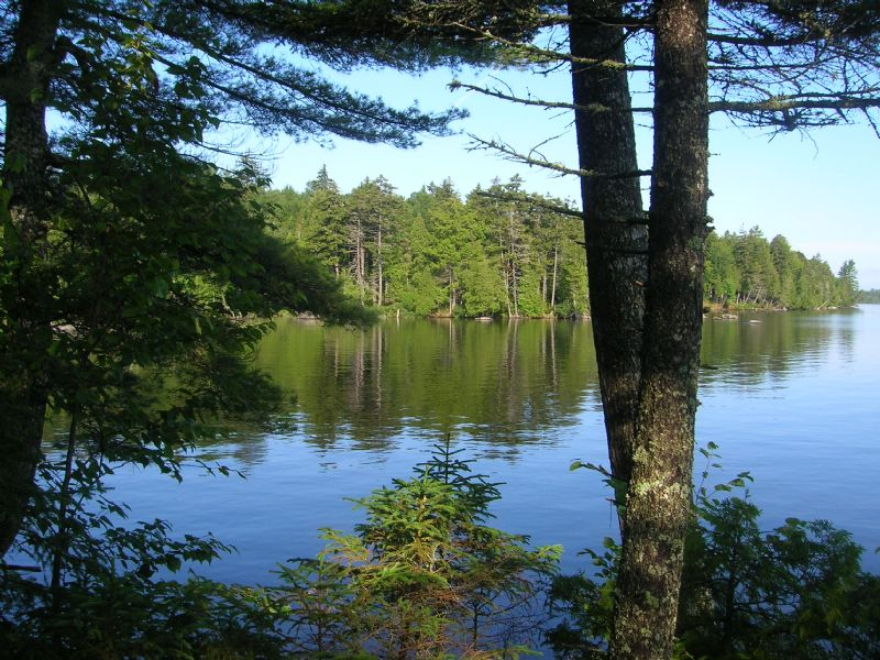 Waterfront Land Auction In Maine : Beaver Cove : Piscataquis County : Maine