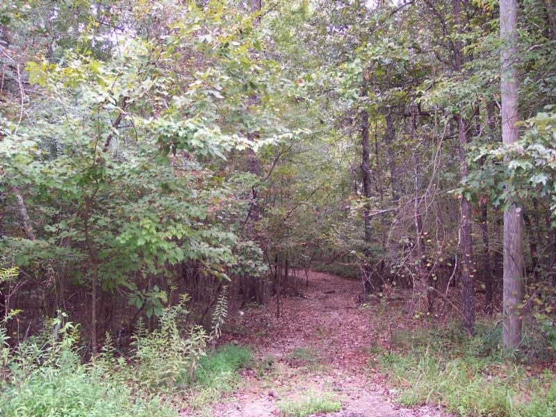 8 Wooded Acres : Cartersville : Bartow County : Georgia