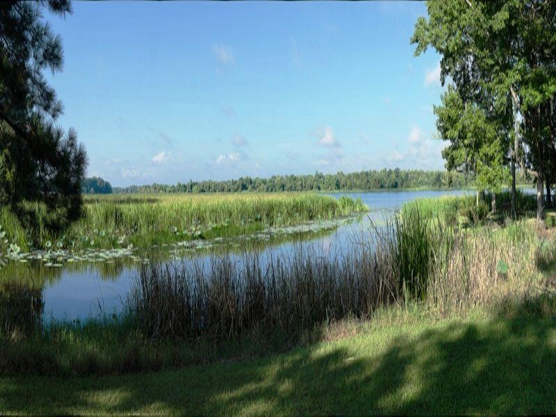 Riverside Shoals : Donalsonville : Seminole County : Georgia