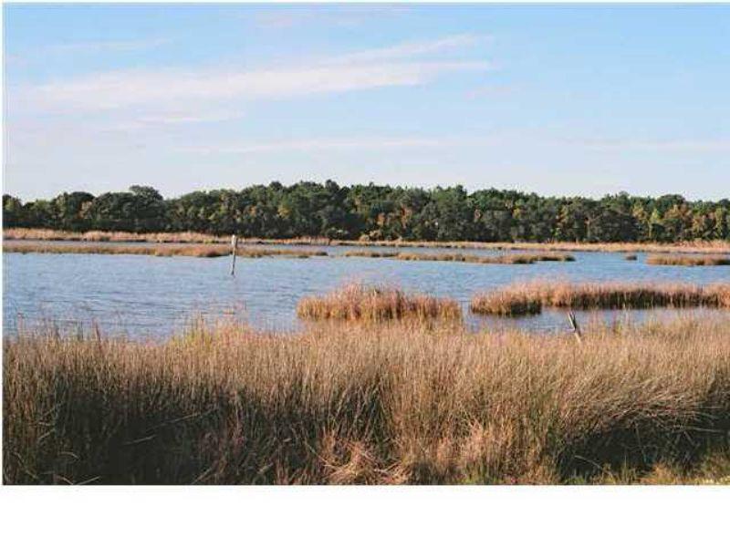 81 Lake Timicau Lane : Dewees Island : Charleston County : South Carolina