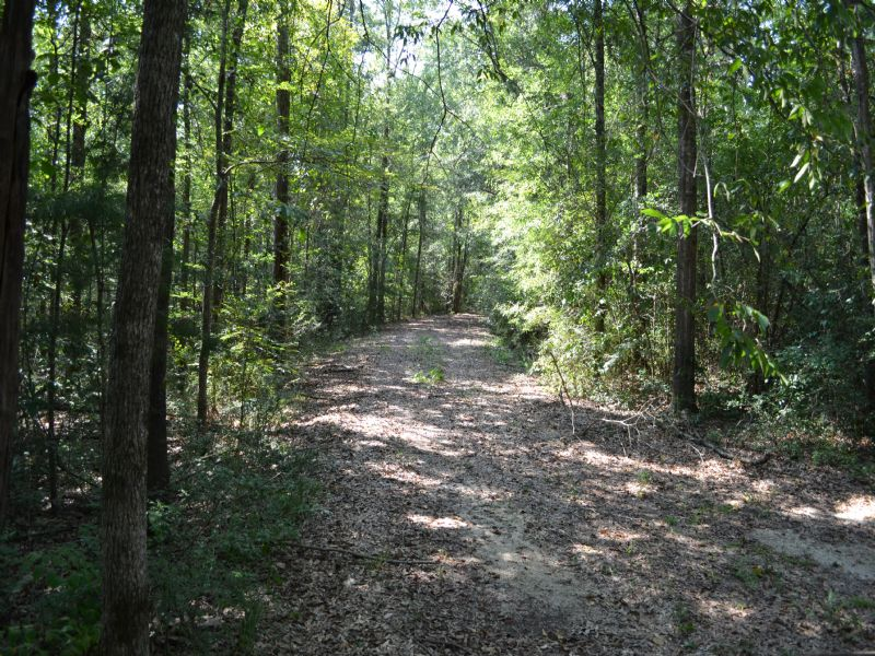 +/-37.75ac - River Rd/bouie River : Hattiesburg : Forrest County : Mississippi
