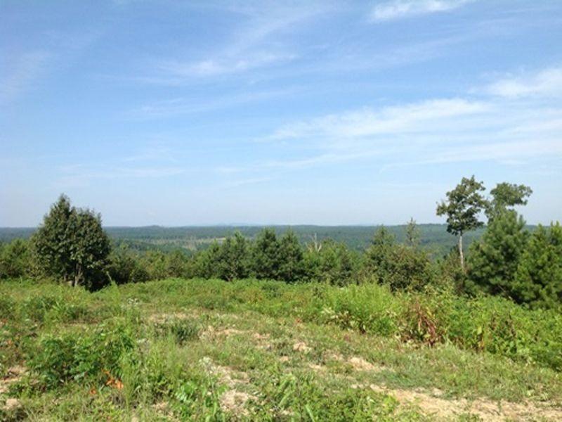 Large Recreational Homesite : Buchanan : Haralson County : Georgia