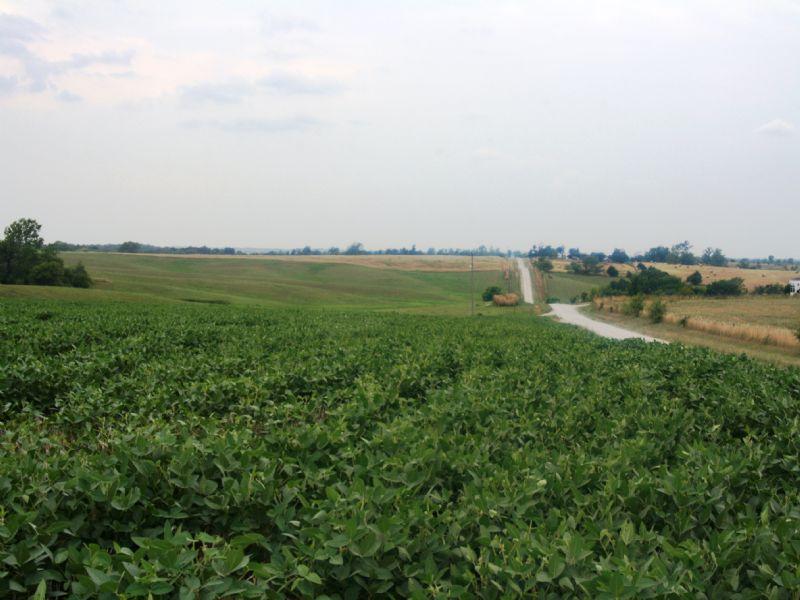 4.7% +/- Return On 40 Acres : New Boston : Linn County : Missouri