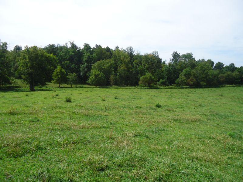 74 Acre Farm : Summer Shade : Metcalfe County : Kentucky