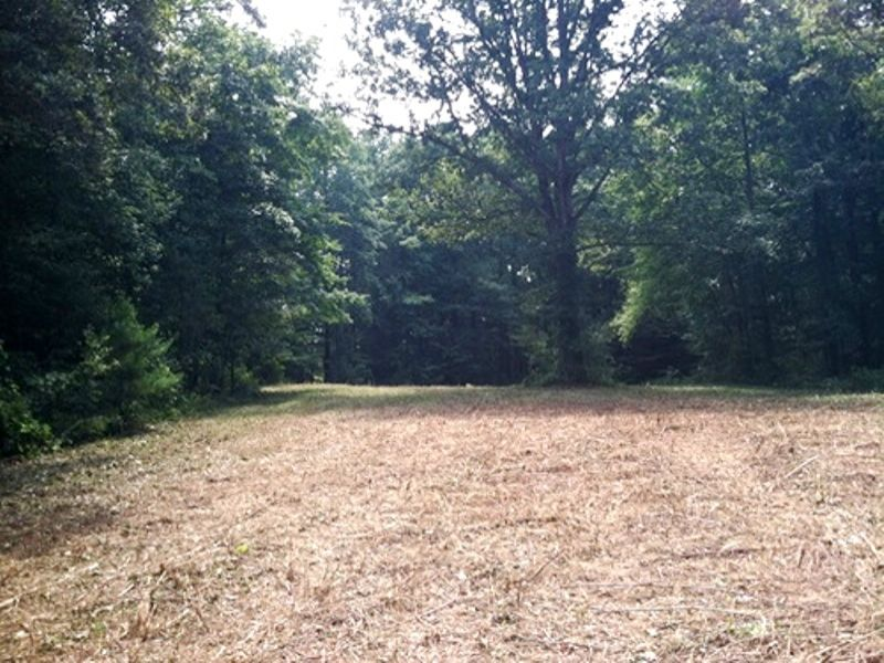 Large Acreage Residential : Marietta : Greenville County : South Carolina