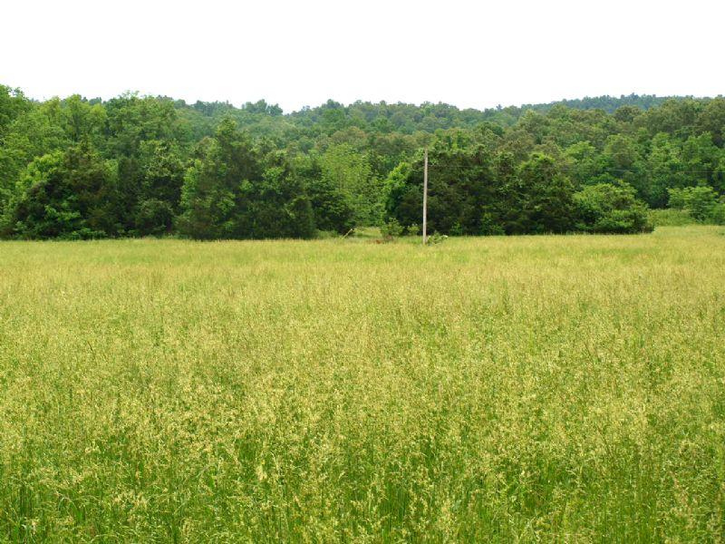 6.13 Acres Near Spring River : Ravenden : Sharp County : Arkansas