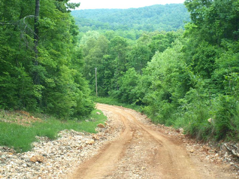 3.9 Acres Beautiful River Bottom : Ravenden : Sharp County : Arkansas