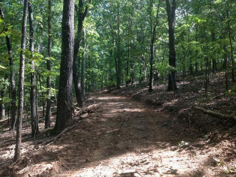 17+/- Acres Beautiful Hardwoods : Goodwater : Coosa County : Alabama