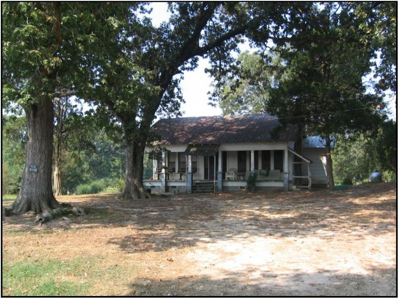 83 Acres : Carthage : Leake County : Mississippi