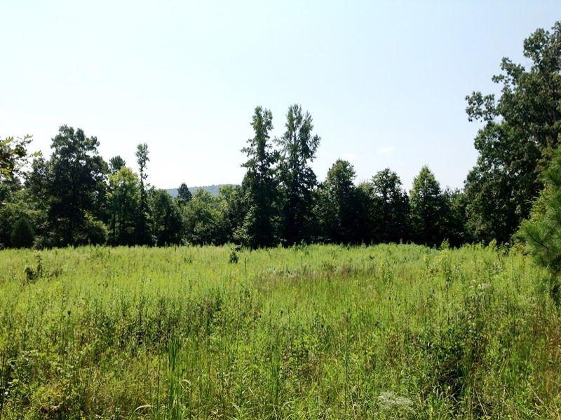 Recreational Farming Homesite : Summerville : Chattooga County : Georgia