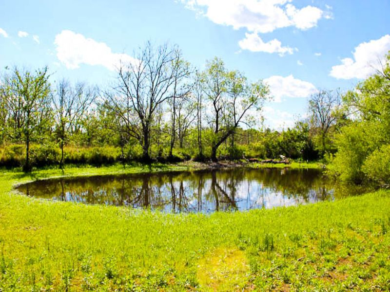 Saddlebrook Ranch Ok Land Terms : Wetumka : Okfuskee County : Oklahoma