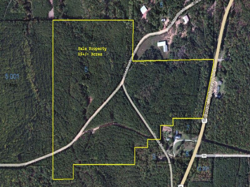 89+/- Acres Investment Timberland : Daviston : Tallapoosa County : Alabama