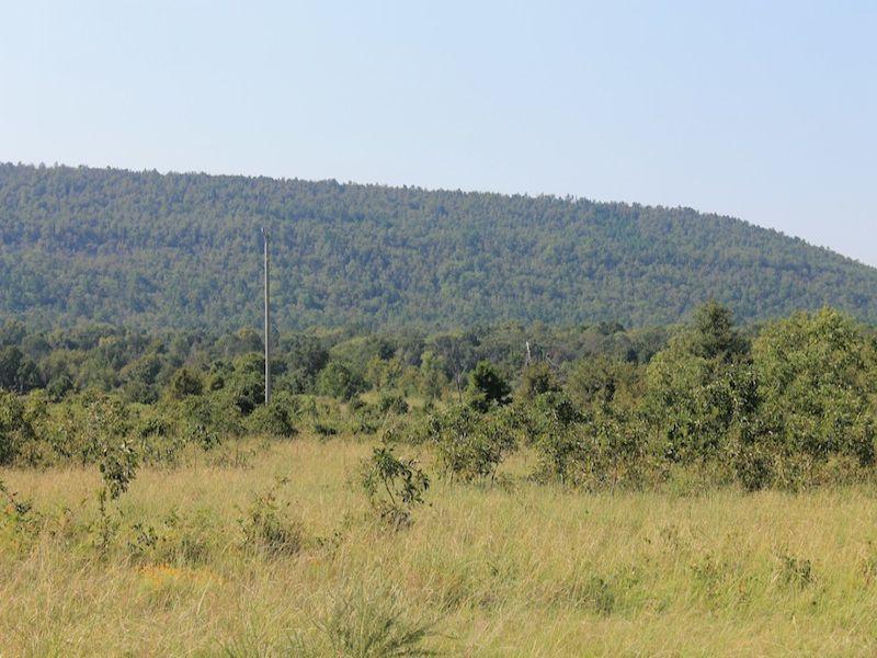Daisy Meadows Oklahoma Land Terms : Daisy : Pittsburg County : Oklahoma