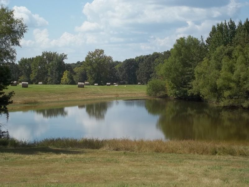 17.9 Ac. Pasture Land With A Pond : Senatobia : Tate County : Mississippi