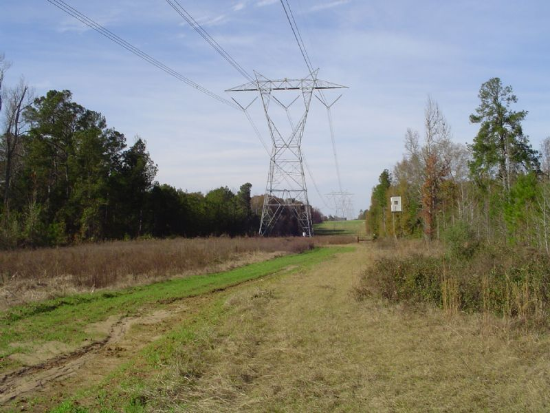 Jessup Knight 3 Tract : Cochran : Dodge County : Georgia