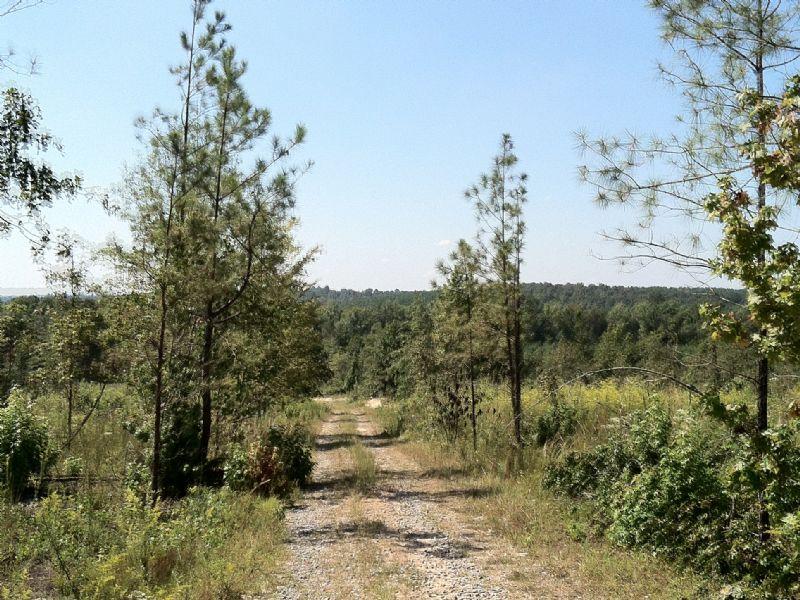 Turkey Creek Tract : Milledgeville : Baldwin County : Georgia