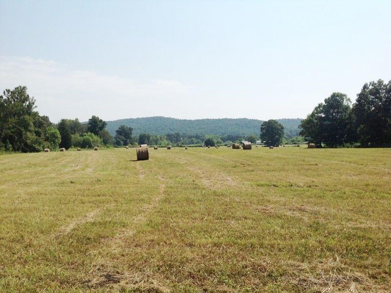 Rural Farming Homesite : Summerville : Chattooga County : Georgia