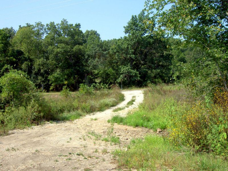 7 Acres With Creek Frontage : Willow Springs : Howell County : Missouri