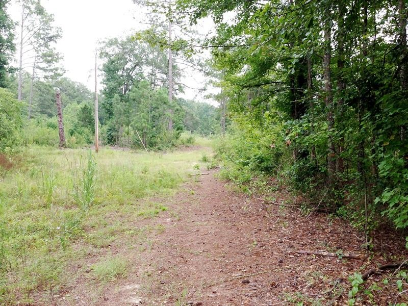 Recreational Homesite With Pond : Thomson : McDuffie County : Georgia
