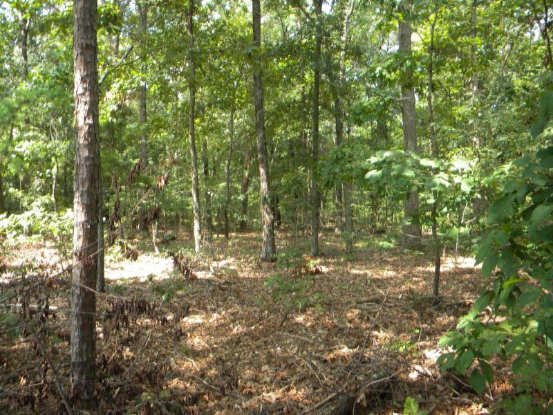 6 Acre Home Site Near Bmw : Duncan : Spartanburg County : South Carolina
