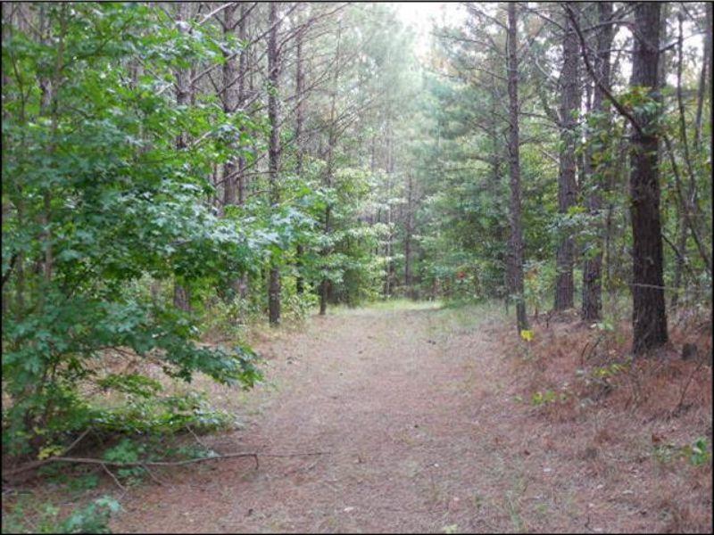 200 Acres : Sweatman : Montgomery County : Mississippi