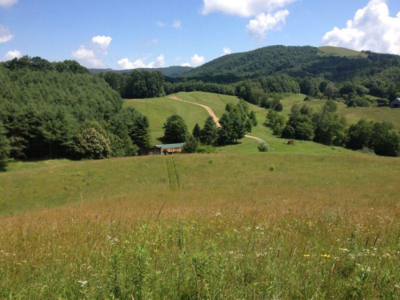 259 Acre Farm In Creston : Creston : Ashe County : North Carolina