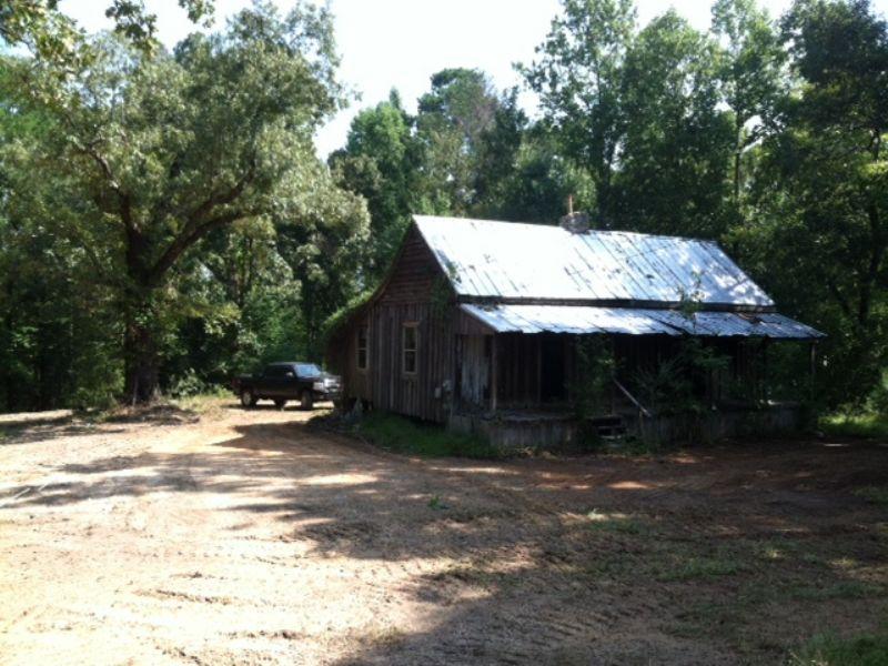 51+/- Acres Heard Hill Rd. : Jacksons Gap : Tallapoosa County : Alabama