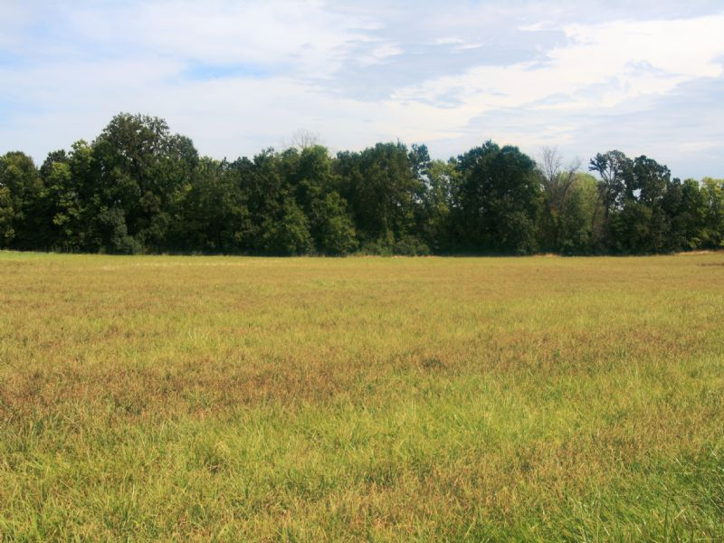6 Acre Building Tract : Troy : Lincoln County : Missouri