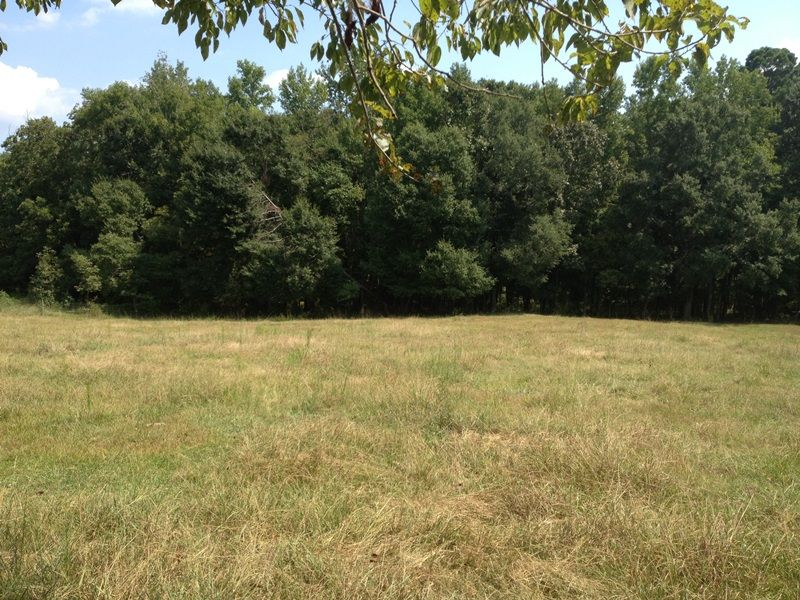 Agricultural Homesite With Pond : Covington : Newton County : Georgia
