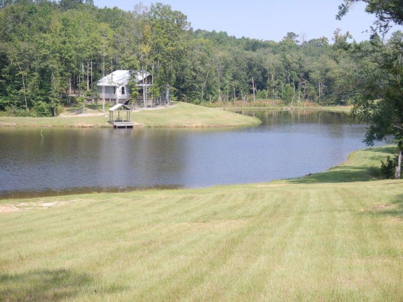 Enslen Property - 275 +/- Acres : China Grove : Bullock County : Alabama