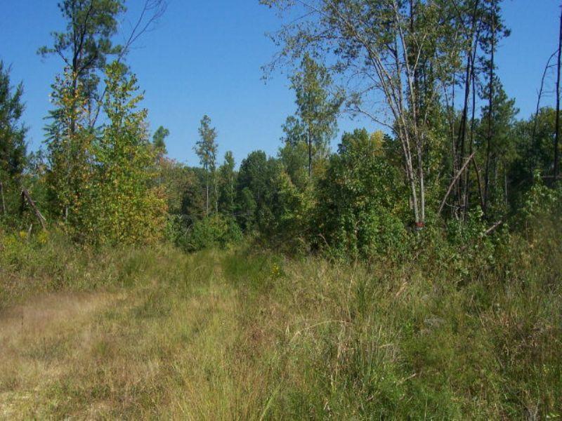 Lakewood Landing Tract : Farmville : Prince Edward County : Virginia