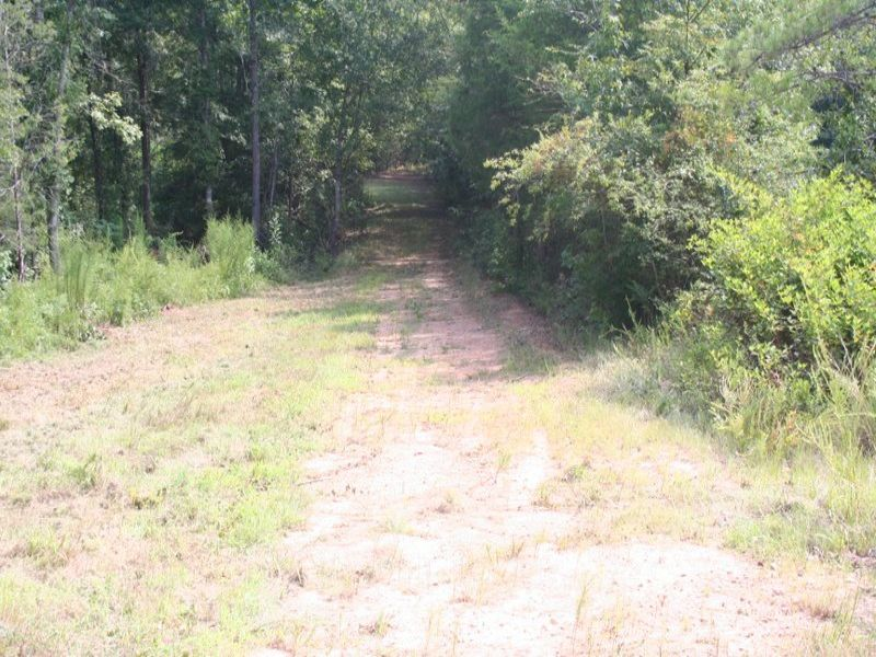 +/- 89.43 Acre Recreational/hunting : Laurens : Laurens County : South Carolina