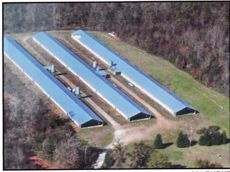 Poultry Farm-16.95 Ac. & Farmhouse : Carnesville : Franklin County : Georgia