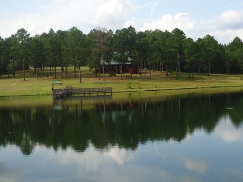 Log Cabin On 67 +/- Ac : Troy : Pike County : Alabama