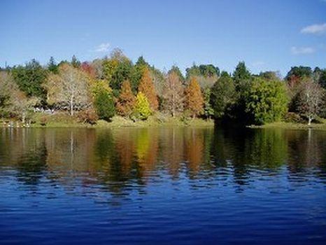 2,500 Sq. Ft. : Lake County : Lake County : Michigan