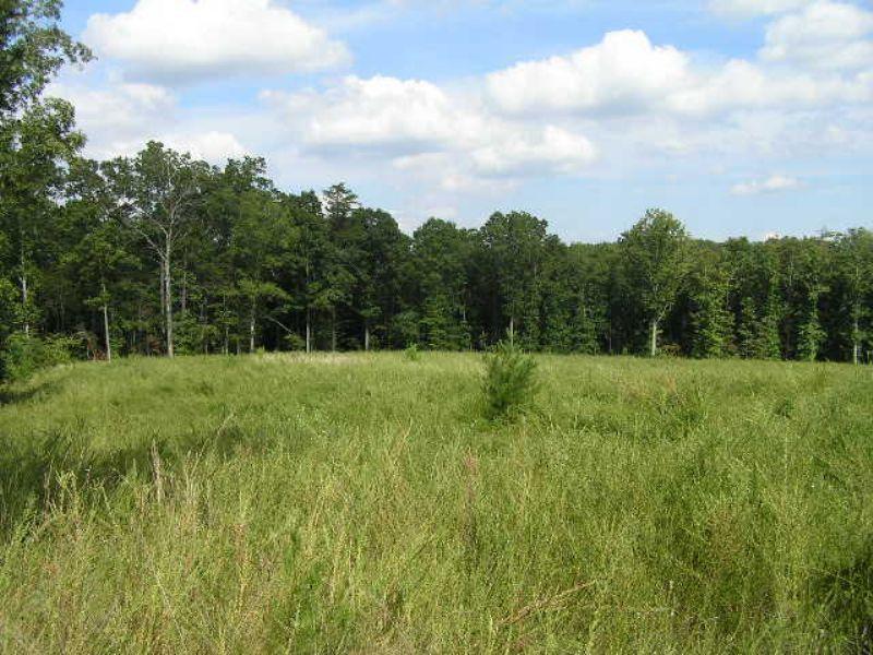 Meadow, Woods, Creek, 25 Acres : Spencer : Van Buren County : Tennessee