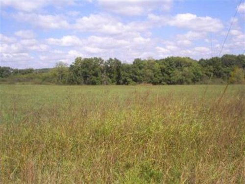 Land. Approx 5.05ac Lot. Build Y : Forsyth : Taney County : Missouri