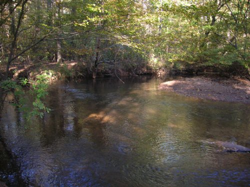 9.26 Ac. Millbrook-secluded : Millbrook : Elmore County : Alabama