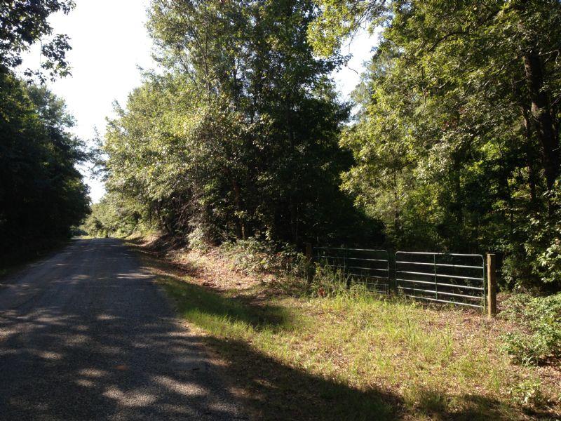 Renfroe 6 : Cusseta : Stewart County : Georgia