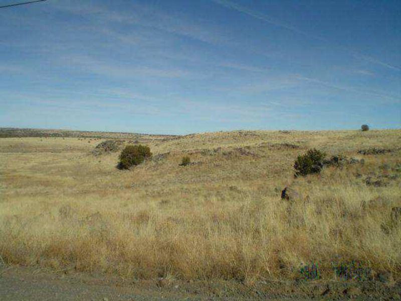 .25 Acre Concho Lakeland : Concho : Apache County : Arizona