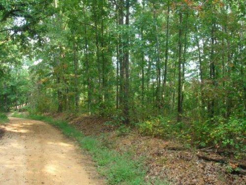 6.48 Acre Sugartree Falls. Terms : Waynesboro : Wayne County : Tennessee