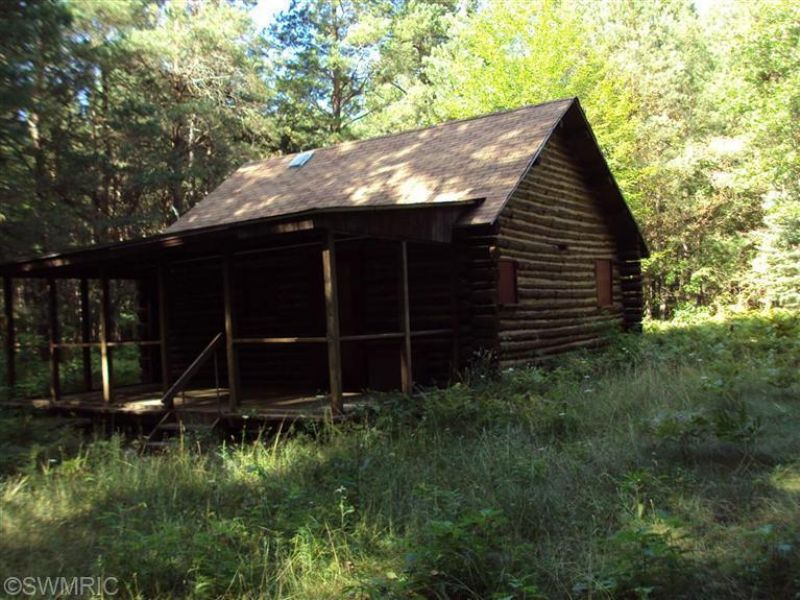 Cabin In The Woods : Holton : Oceana County : Michigan