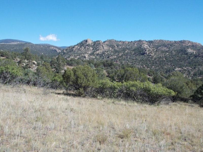 #229188- Beautiful Views W/privacy : Cotopaxi : Fremont County : Colorado
