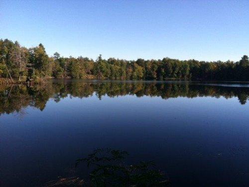 Waterfront Cabin Near Syracuse Ny : Constantia : Oswego County : New York